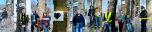 Vastgeketend aan bedreigde platanen - Enchaînés aux platanes menacés