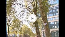 TV Brussel
